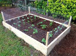 Small Picture Raised Bed Vegetable Garden On A Slope Impressive Raised Bed