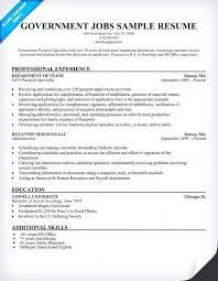 Federal Nurse Sample Resume Inspiration Federal Government Resume Samples Government Job Resume Template