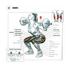 squat machine muscles worked and form used