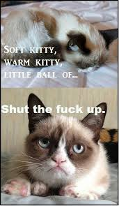 Grumpy Cat / Soft Kitty #meme   Memes & Funny Pics   Pinterest ... via Relatably.com
