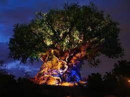 Disney's Animal Kingdom Park Hours ...