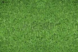 green grass soccer field. 5540073-green-grass-background-of-soccer-field Green Grass Soccer Field D