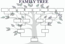 pedigree tree the genealogical world of phylogenetic networks goofy genealogies
