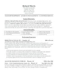 Insurance Agent Job Description For Resume Classy Collection Agent Resume Collection Agent Resume Bank Collections