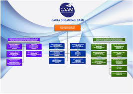 Malaysian Government Organization Chart Organisation Chart Civil Aviation Authority Of Malaysia