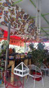 photo of casaplanta garden center miami fl united states