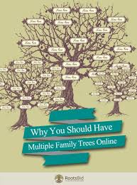 Why You Should Have Multiple Family Trees Online Genealogy