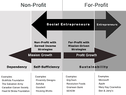 entrepreneurship examples twenty hueandi co social entrepreneurship definition and boundaries tim review