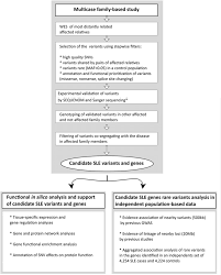 Validation Study Design Graphic Summary Of The Study Design Step By Step Scheme