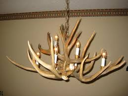 authentic whitetail deer antler chandelier