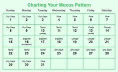 Period Chart To Avoid Pregnancy Ivana Hivana98 On Pinterest