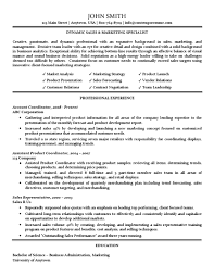 Resume Traditional Sales Marketing Specialist Resume Traditional Standard Format