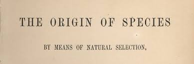 Dall'elezione alla selezione naturale: parole ed evoluzione linguistica ne  L'origine delle specie di Darwin - Zanichelli Aula di lettere