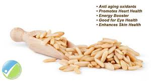 Barley could be the key to losing weight and warding off heart disease and diabetes, experts have revealed. Pine Nuts Health Benefits Side Effects Doses And Supplements Nuts Health Benefits Pine Nuts Pine Nuts Benefits