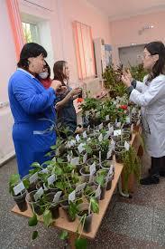 Ботаники БГУ представили Дары осени  Праздник был организован факультетом биологии географии и землепользования кафедрой ботаники и ботаническим садом БГУ