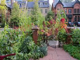 tips for a small bountiful city garden
