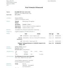 It Incident Report Template Environmental Software Bug