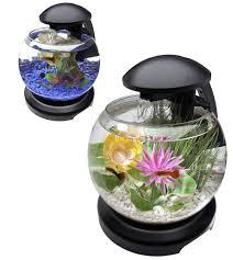 Small Fish Bowl Decorations 60 Fish Bowl and Aquarium Design for Fish Lover Design Swan 34