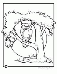 Small Picture Owl Coloring Pages Woo Jr Kids Activities