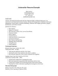 Underwriter Resume Sample Tomyumtumweb Com