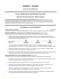 Executive Classic Format Resume Executive Resumeat Unique Templates