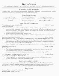 Resume Writing Services Science Beautiful Professional Resume Resume