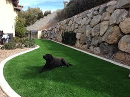 artificial grass las vegas. 20130302-214123.jpg Artificial Grass Las Vegas