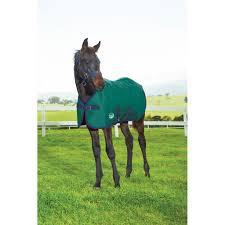 Weatherbeeta 1200d Standard Neck Blanket Foal