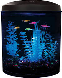 Glofish Light Bar Show Off Your Fish In A New Light With This 2 Gallon Api