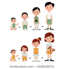 Child Developmental Stages And Growth Chart Children Growth Chart Vector Images Stock Photos Vectors
