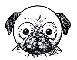 dog face drawing for kids.  Kids Kids Printable U2013 Draw Some Dogs Pug Dachshund In Dog Face Drawing For
