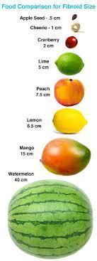 Comparing Fibroids With Fruits Uterine Fibroids Fruit