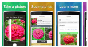 garden app. Discover And Study Thousands Of Flowers Plants With This Gorgeous Image Recognition App. Using Built-in Visual Search Technology, LikeThat Garden, Garden App