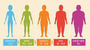 Aarp Weight Chart Bmi In Adults Is Yours Healthy And If Not How Can You