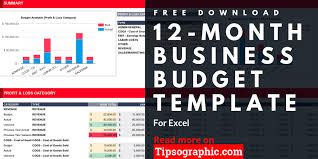 Free Budget Download 12 Month Business Budget Template For Excel Free Download