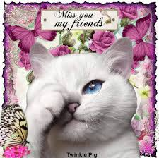 miss you my friends