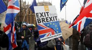 Image result for stay angry and fight brexit