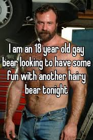 Stories hairy bear gay