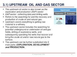 Petroleum Industry Structure