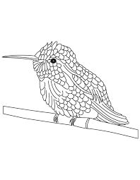 Small Picture Black chinned hummingbird coloring page Download Free Black