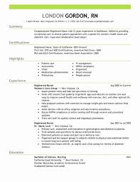 Pilot Resume Template Mesmerizing Pilot Resume Examples The Best Way To Write Healthcare Resume