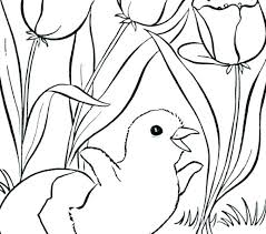 Pictures Of Spring Flowers To Color Spring Flowers Coloring Pages