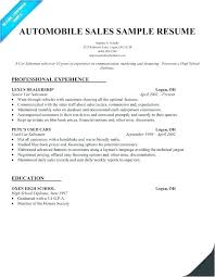 Professional Sales Resume Template Insurance Sales Resume Simple Cool Insurance Sales Resume