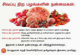 Healthy Diet Chart In Tamil Paleo Delivery Meal Plan Menu 4