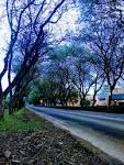 imagem de Vera Cruz Rio Grande do Sul n-14
