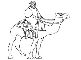 Small Picture Coloring Pages Animals Free Hippie Camel Coloring Page By
