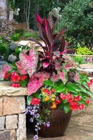 patio plants for shade appealing design for potted plants for shade ideas potted plants for outdoor