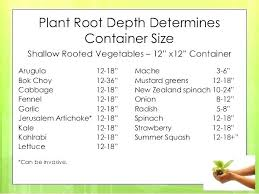 Companion Planting Chart Uk Plant Pot Sizes Chart Pernime Info