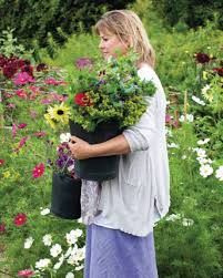 growing cut flowers with sarah raven