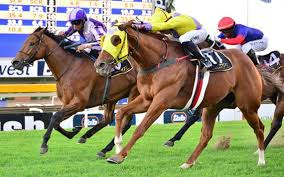 race log summer cup log moon can make a difference sporting post